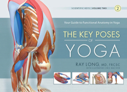 Key Poses of Yoga